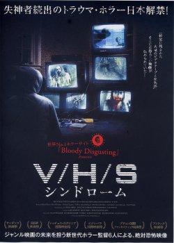 画像1: V/H/Sシンドローム